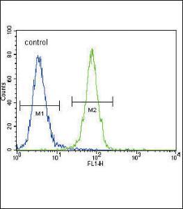 Anti-DDR1 Rabbit Polyclonal Antibody (HRP (Horseradish Peroxidase))