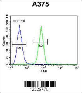Anti-DERA Rabbit Polyclonal Antibody (AP (Alkaline Phosphatase))