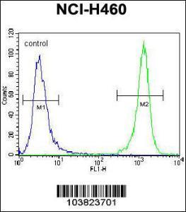 Anti-DGKQ Rabbit Polyclonal Antibody (APC (Allophycocyanin))