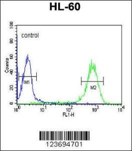 Anti-DLK2 Rabbit Polyclonal Antibody (Biotin)
