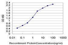 Anti-COX17 Mouse Monoclonal Antibody [clone: 4G2]