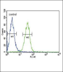 Anti-COMP Rabbit Polyclonal Antibody (APC (Allophycocyanin))
