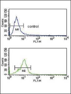 Anti-CRHR2 Rabbit Polyclonal Antibody (APC (Allophycocyanin))