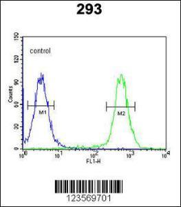 Anti-CSGALNACT2 Rabbit Polyclonal Antibody (HRP (Horseradish Peroxidase))